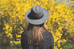 How wonderful yellow is. It stands for the sun.. - Vincent van Gogh (CarolienCadoni..) Tags: light sun hat yellow photography outdoor nederland groningen 50mmf14 backshot stadskanaal nieuwbuinen sonyslta99