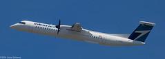 WestJet Encore, C-FENU, 2013 De Havilland Canada DHC-8-402Q Dash 8, MSN 4446, FN 403 (Gene Delaney) Tags: boston massachusetts loganairport bos takeoff encore wr turboprop dh4 kbos westjetencore cfenu 2013dehavillandcanadadhc8402qdash8 msn4446 fn403