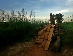 The Crossing (Jekwot) Tags: bridge nature rural women goods dilapidated