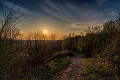The way down in the sunset (Alexander Leyk) Tags: longexposure travel blue sunset sky cloud sun lake hot art clouds zeiss photoshop germany landscape deutschland photography see wasser europa europe raw mood fotografie sonnenuntergang outdoor kunst sony urlaub natur himmel wolken wideangle location menschen gras blau landschaft sonne bume stimmung lightroom weitwinkel mirrorless blumenundpflanzen lightroom5 alexanderleyk sonya7ii