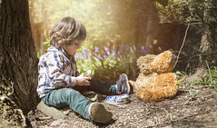 todays the day.... (windermereimages1) Tags: boy sun cute love childhood bluebells fun spring woods picnic child dream believe innocence imagine playtime teddies teaparty nurseryrhyme