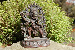 Vajrapani Tibetan Bronze Statue (TREASURES OF WISDOM) Tags: sculpture whatisthis love look statue mystery bronze wow wonderful religious nice worship shrine view lotus spirit buddha yes buddhist magic like buddhism visit exhibition collection figure sacred offering unknown ritual tibetan longevity nepalese unusual vibes spirituality wisdom om spiritual yingyang artifact healing brilliant puja deity shamanic mystic votive himalayan pagan artefact unseen thunderbolt asianart mythical tantric tribalart ancientworld vajrapani ethnographic intresting godofwisdom ommanipadmihum bronzetreasures