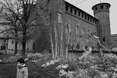 (Roybatty63) Tags: street blackandwhite bw torino blackwhite nikon streetphotography bn piazza biancoenero castelli citt centrostorico aiuola d80 villeegiardini