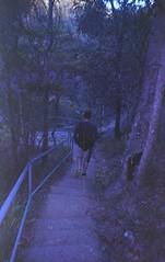 walk down (kaylanapier) Tags: walking steps away down stepping following
