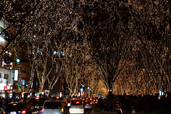 DSC03209.jpg (randy@katzenpost.de) Tags: winter japan sendai miyagiken sendaishi japanurlaub20152016