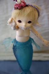 Ludwig (Sorakuro) Tags: real doll mari bjd dollfie fairyland fee realfee