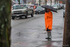 DSC08196.jpg (tfxc) Tags: running roadrace caseys hardrain srr coldrain eastsomerville winterchallenge somervilleroadrunners wintahchallengefestivusedition