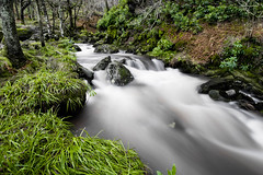 Inversnaid Falls.jpg (weejohnmurray) Tags: winter green water landscape scotland waterfall scottish falls lochlomond inversnaid