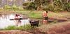 Doing choirs at the lake, Kenya (ReinierVanOorsouw) Tags: africa travel people lake kenya goat afrika washing kenia geit mensen choirs kakamega kenyai eastafrica كينيا washingcloths reisfotografie gettingwater κένυα reiniervanoorsouw oostafrika کنیا कीनिया
