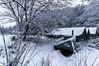 2016-01-16 078 (jamie reilly) Tags: trees snow water grass river scotland pier boat highlands scenery stream burn loch boathouse ard aberfoyle lochard