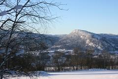 Norwegian Winter (Brian Aslak) Tags: trees winter snow field norway rural landscape norge europe hills scandinavia lier stlandet tranby busekrud