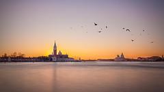 Sunset in Venice (pixadeleon) Tags: longexposure venice sunset sky birds yellow venezia venedig waterscape challengegamewinner