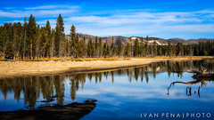 Serenity At Yellowstone (ivanpenaphoto) Tags: travel vacation usa canon nationalpark wyoming 2012 phototrip ivanpena fineartbyivan ivanpea artbyivan ivanpenaphoto ivanpenaphotoaolcom