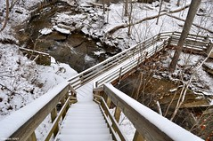 Over the river and through the woods (Studio 9265) Tags: park wood bridge trees winter snow cold ice america forest river wooden state path united indiana falls trail madison states february snowcovered 2016 clifty