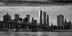 Manhattan panorama (another_scotsman) Tags: bridge blackandwhite newyork brooklyn cityscape manhattan