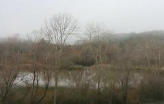 Spring Lake in Winter (brian dean bollman) Tags: sonomacounty springlake santarosaca springlakecountypark