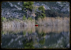 (Vasilis.) Tags: red lake pinetree boat reflexions ilia kaiafas
