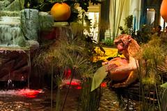 Bellagio_Chinese New Year-12 (Swallia23) Tags: las vegas flowers money hotel peach chinesenewyear casio nv bellagio yearofthemonkey 2016 conservatorybotanicalgarden