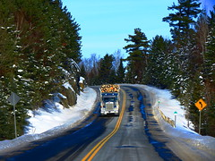 Crossing the line (jr-transport) Tags: winter ontario log hwy custom 900 trucking kenworth 502 hauler w900 w900l