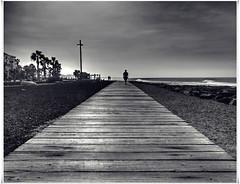 time for a walk ! (kurtwolf303) Tags: ocean sea sky espaa beach topf25 strand person interesting spain topf50 topf75 scenery meer europe 500v20f walk kanaren horizon eu himmel palmtrees tenerife teneriffa topf100 plain canaryislands topf200 horizont spanien 800views omd spaziergang islascanarias palmen playadelasamericas 3000views 900views 2500views 750views 1500v60f 1000v40f 250v10f monochromefineart systemcamera unlimitedphotos micro43 microfourthirds streetpassionaward blackwhitepassionaward olympusem1 artbwbtra kurtwolf303