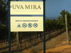 Uva Mira (RobW_) Tags: sign southafrica march saturday vineyards uva mira stellenbosch westerncape 2016 05mar2016