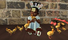 + What the Duck!? + (Nyah Aaliyah Pana Kouyama) Tags: baby fashion blog kid mesh blogger clothes sl secondlife toddleedoo