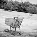 Lost Cart