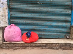 We Need to Deal With Income Inequality, Complains Red (Mayank Austen Soofi) Tags: pink red with delhi we deal need income walla inequality