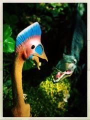 battle of kings 1 (Chris Blakeley) Tags: seattle toy dinosaur tyrannosaurus pterosaur toydinosaur hipstamatic