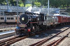 Brisbanes Steam Train Sunday April, Roma Street Station (Photos by Lance) Tags: train brisbane trainspotters queenslandrail railfans americanloco steamtrainsunday ac16221a
