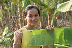 2016-03-01 My Tho, Vietnam024 (HAKANU) Tags: portrait beautiful beauty smile smiling yellow female village dress hometown banana vietnam phuong tropical wife mekongdelta mekong countrylife mytho bananaplant yellowdress wifeah