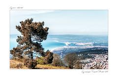 Panorama (Giuseppe Tripodi) Tags: panorama landscape italia porto calabria paesaggio palmi gioiatauro