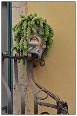 Ceramic Head, Taormina (junepurkiss) Tags: italy plant ceramic sicily taormina plantpot plantholder ceramichead