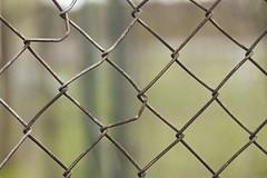 Fence (svenru89) Tags: fence simple zaun tiefenschärfe