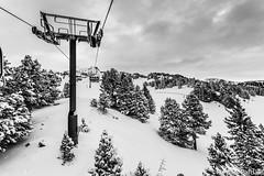 Furcifer Pardalis (Furcifer pardalis) Tags: snow ski montagne neige montains isere chamrousse