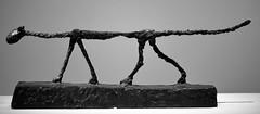 The Cat - Alberto Giacometti (Joe Josephs: 2,650,890 views - thank you) Tags: nyc newyorkcity sculpture art manhattan culture met arthistory metropolitanmuseumofart metmuseum artmuseums travelphotography albertogiacometti joejosephs joejosephsphotography