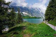 Trbsee (welenna) Tags: blue schnee summer sky lake snow alps green water landscape switzerland see wasser nebel view natur wolken berge alpen blume baum berneroberland wasserspiegel trbsee schwitzerland titlisundtrbsee