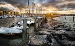 la nautique de Geneve-Modifier.jpg (Charles_2727) Tags: de soleil geneve paysage couch nautique paysagegenevenautiquecouchdesoleil