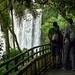 Chutes d'Iguazu - Circuit inférieur