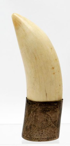 Walrus Tusk with Silver Plate Mount and Engraved Whaling Scene - $231.00