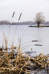 DSC_4794 (kabatskiy) Tags: city urban lake nature landscape spring dump minimal marsh abstracts