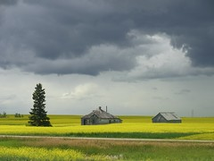 Canola and Clouds (adventurecontinued) Tags: canada clouds just saskatchewan canola justclouds