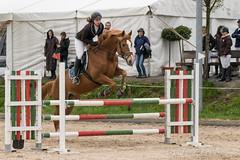 DSC08621_s (AndiP66) Tags: springen hildisrieden reitsportcenter estermann traselinge 2016 pferd horse schweiz switzerland kantonluzern cantonlucerne concours wettbewerb horsejumping equestrian sports springreiten pferdespringen pferdesport sport sony sonyalpha 77markii 77ii 77m2 a77ii alpha ilca77m2 slta77ii sony70400mm f456 sony70400mmf456gssmii sal70400g2 andreaspeters luzern ch