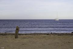 Esttico o en movimiento? (jlpezrecio) Tags: beach nature happy freedom playa almera cabodegata