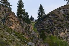 DSC_0236_970 (Derek Shore) Tags: sky mountain tree nature beautiful wow outside cool nikon nikond3300 d3300