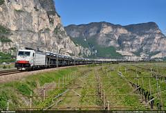 Misto monotono... (Marco Stellini) Tags: alps traction valle rail company 186 valley brennero bombardier traxx adige mezzocorona canjon 443 lokomotion brennerbahn e186