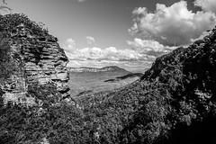 DSCF4570 (M.D.Rozen) Tags: nature bush hiking sydney australia fujifilm cascade bushwalk katoomba leura x100t