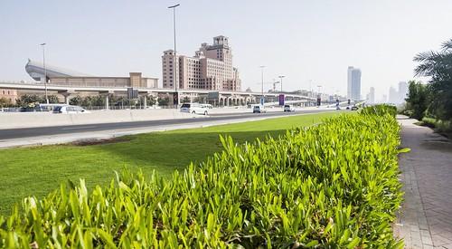dubai - emirats arabe unis 27
