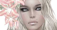 in simple words (arialee miles) Tags: life words indoor secondlife second simple