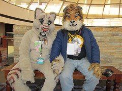 IMG_0412 (2) (raiderwolf22) Tags: illinois midwest rosemont hyatt regency fursuit furcon furfest
